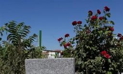 Eskişehir Mezarcı